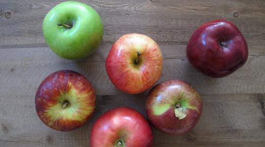 Applesauce-01