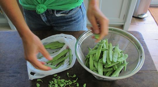 Stewy green beans and tomatoes-01